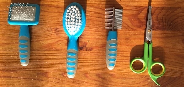 Guinea pig grooming kit with 2 brushes, comb and round tipped scissors