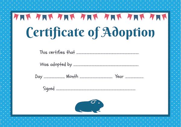 blue guinea pig adoption certificate